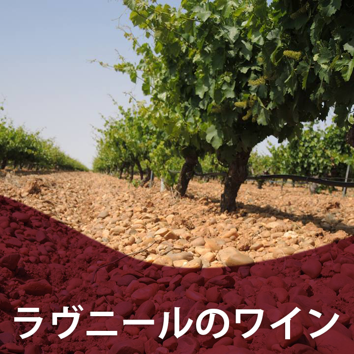 ラヴニールのワイン